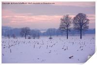 Winter Evening, Print
