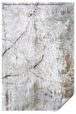 Frosted Tree, Print