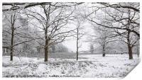 Frozen Nature, Print