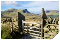 Gate on Mountain Path, Print