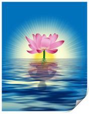 Lotus Reflection, Print