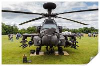 Facing an Army Air Corps Apache AH1, Print