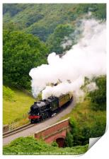 Yorkshire Coast Express, Print
