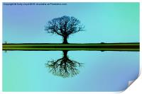 Solitary tree in blue symmetry, Print