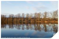 Whitlingham Broad Tree Reflections, Print