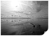 Salt Lagoon B&W, Print