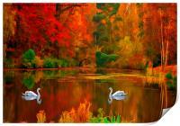 swan lake , Print
