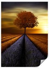 The  tree , Print