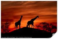 Giraffe Silhouette , Print