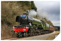 The Flying Scotsman In Newtondale, Print