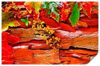 Colorful autumn leaves, Print
