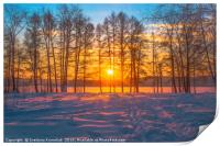 Winter sunset, Print