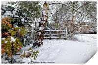 Winter wonderland, Print