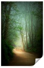 Mysterious Path , Print