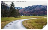 Path through a meadow, Print