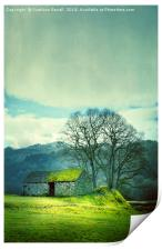 Green Hill, Print