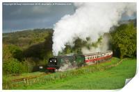 34007 Wadebridge on the Bodmin & Wenford Railway, Print