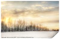 Fire sky over snow fields, Print