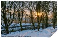 Peak District | Winter trees in Castleton, Print