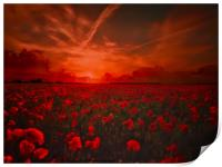 Poppy Field for Remembrance. Lest we Forget, Print