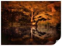 Autumnal Colours, Print