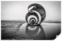Mary's Shell, Print