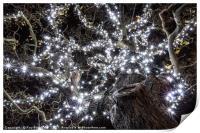 Christmas Lights , Print