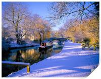 Basingstoke Canal in winter, Print