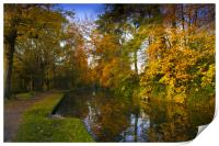Basingstoke Canal in Autumn , Print