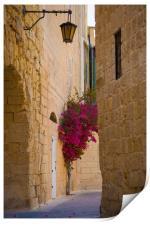 Street sceane Mdina,Malta, Print