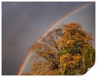 Autumn Rainbow, Print