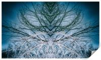 Woodland Ghostdancer, Print
