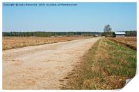 Gravel Road By The Fields, Print