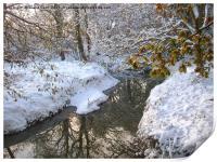 Snow dream, Print