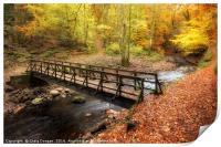Alyth Autumn Wonderland, Print