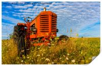 Bright Red Tractor, Print