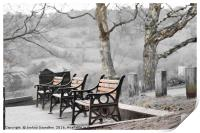 Winter Benches, Print