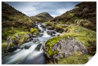 Outflow from Loch Skeen on Tail Burn, Print