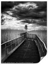 Newport Lighthouse                                , Print