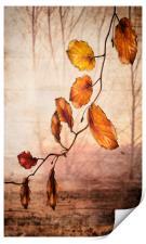 Autumn melody , Print