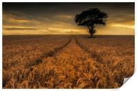 Harvest Time, Print