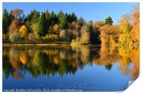 Penicuik Pond autumn colours 2016, Print
