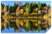 Autumn colours on Penicuik Pond 2016, Print