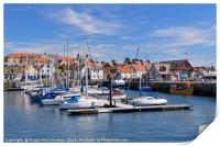 Anstruther harbour, Print