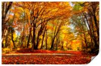 Autumn in Quebec, Print