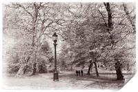 A walk in the park, Print