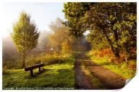 Autumn Pathway, Print