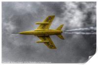 Gnat - Yellowjack, Print