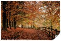 Ryburn in Autumn, Print