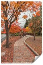 Yountville in Autumn, Print